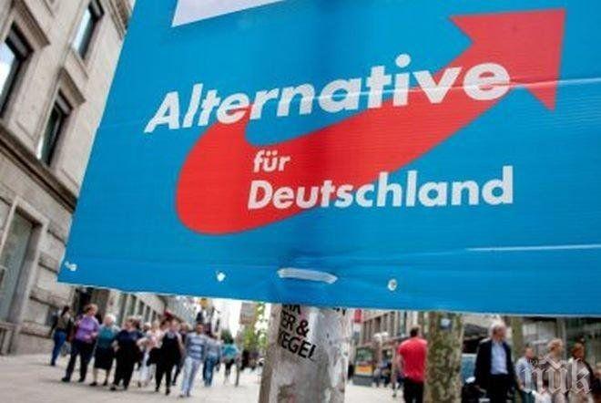 """""""Алтернатива за Германия"""" вече е втора"""