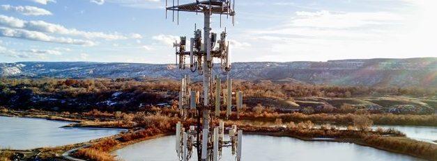 Ето какви са ефектите от 5G мрежата върху природата /ВИДЕО/